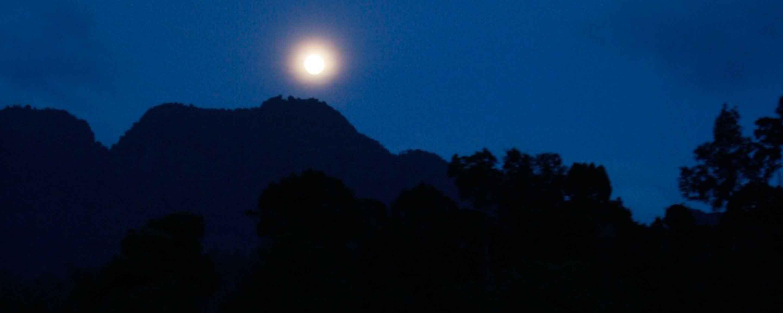 night-banner